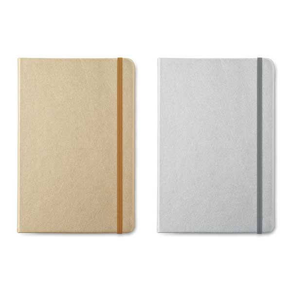 GOLD AND SILVER NOTEBOOKS